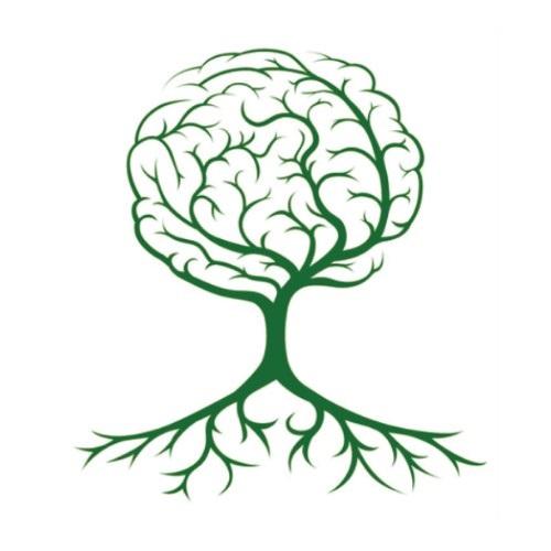 腦部系列保健食品研發
